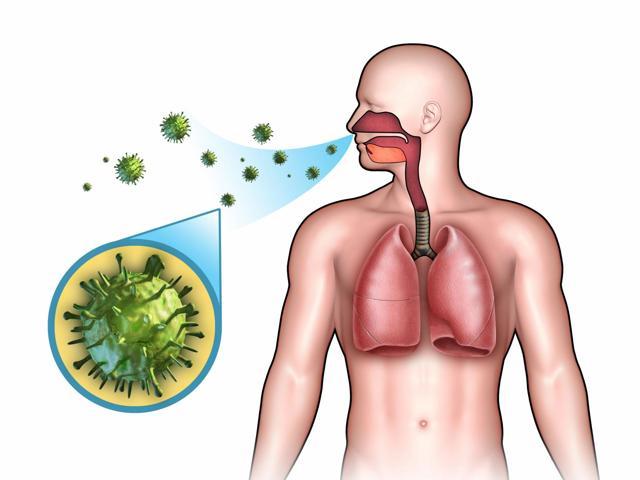 Воспаление связок горла: причины и как лечить в домашних условиях