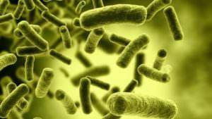 Болит горло, больно глотать: чем лечить в домашних условиях