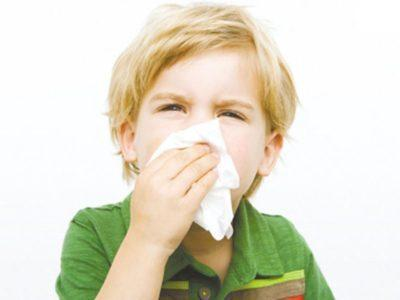 Облепиховое масло при насморке и заложенности носа: как капать и можно ли?