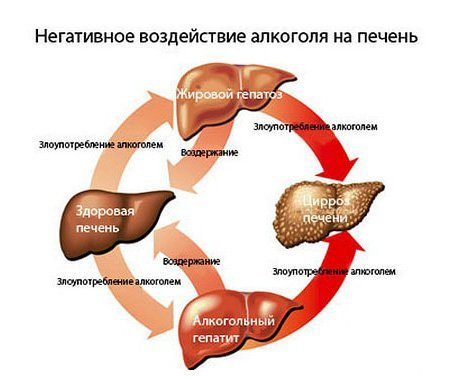 Как влияет алкоголь на желудок: эффекты от употребления спиртных напитков