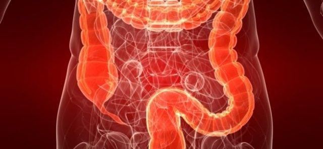 Диета при гастрите и язве желудка: принципы здорового питания, меню, рецепты