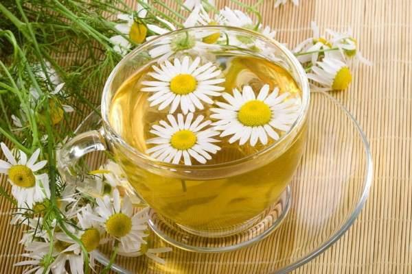 Ромашка при гастрите: лечебные эффекты, рецепты чаев, отваров и настоев