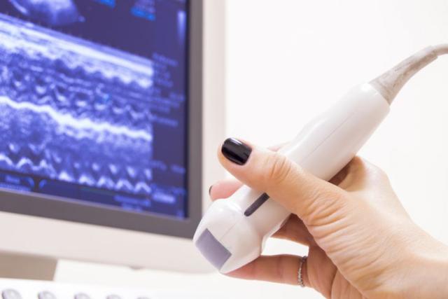 Можно ли делать УЗИ при месячных: органов малого таза, почек, щитовидки