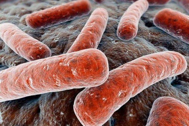 Туберкулез матки