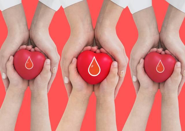 Сколько раз можно сдавать кровь и как часто это можно делать