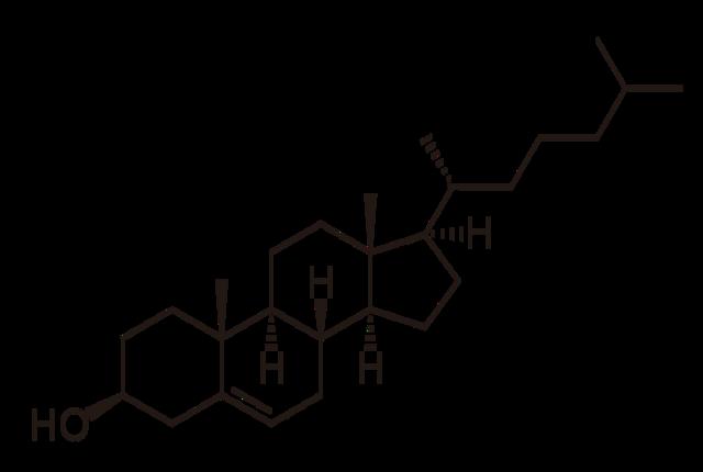 Холестерин в крови: содержание в норме, что его повышает и методы снижения