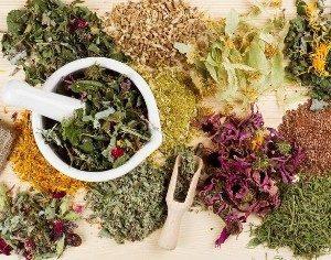 Травы для разжижения крови: какие лекарственные растения используют