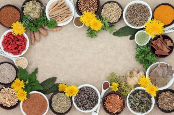 Лечение пищевода народными средствами: настои, отвары, лекарственные сборы, которые способны нормализовать состояние слизистой органа