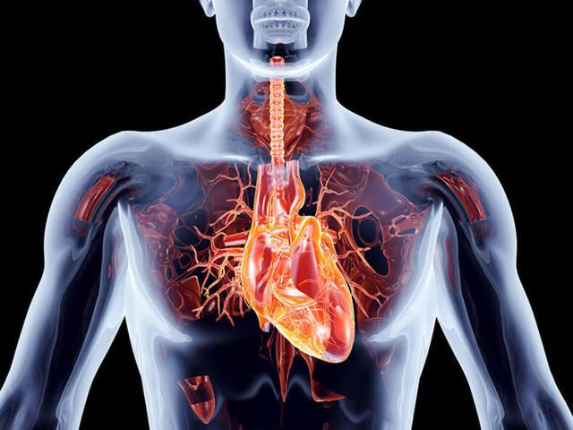 Что делать с высоким сердечным давлением: причины и рекомендуемые лекарства