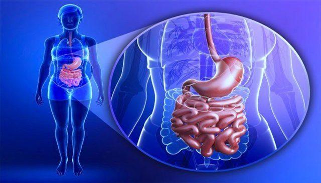Язва привратника желудка: причины развития, симптомы, диагностика и лечение