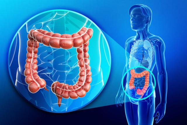 Тромбоз кишечника (мезентериальный): симптомы, лечение и причины