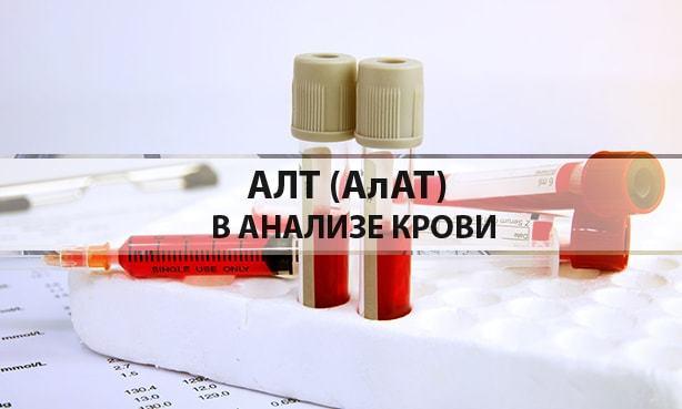 АЛТ в крови: норма, причины повышенного показателя и как его снизить