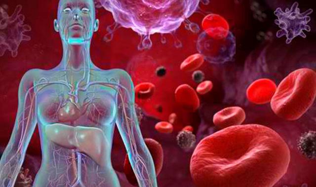 Врач по крови (гематолог), какой доктор лечит сосудистые заболевания