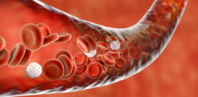 Виды кровотечений, их характеристики и способы остановки