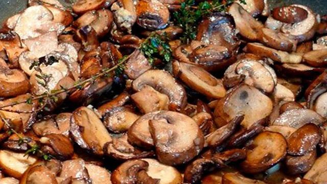 Грибы при гастрите: влияние на желудок, в каком виде есть, рецепты отваров