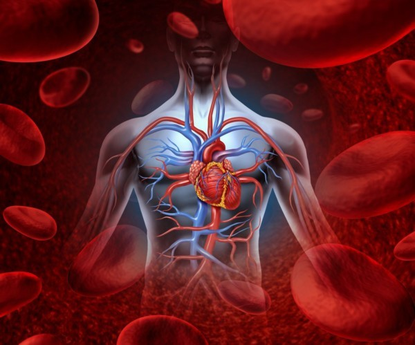 Аневризма сердца: ее лечение и операция, симптомы у новорожденных детей