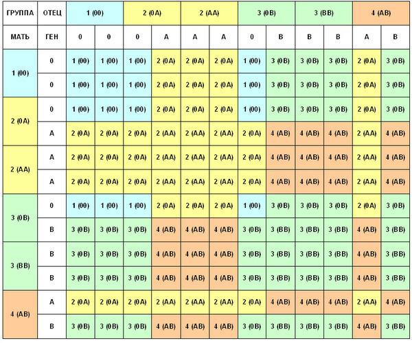 Совместимость групп крови при переливании: какие пробы проводят и зачем