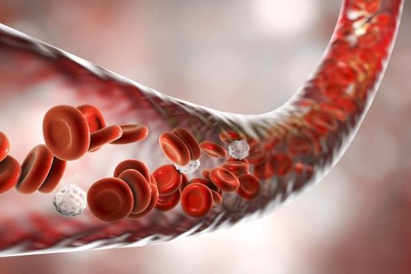 Препараты для разжижения крови: какие средства лучше использовать?