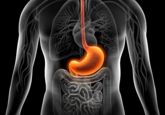 Как повысить кислотность желудка: препараты, народные рецепты и диета