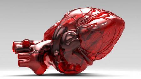 Тампонада сердца: симптомы, лечение, причины и неотложная помощь