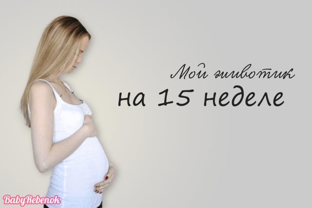 15 неделя беременности: что происходит с малышом, мамой, ощущения, развитие